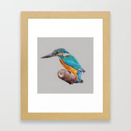 Kigfisher 2 Framed Art Print