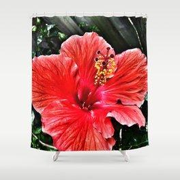 Habiscus Shower Curtain