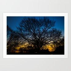 Tree At Dusk Art Print