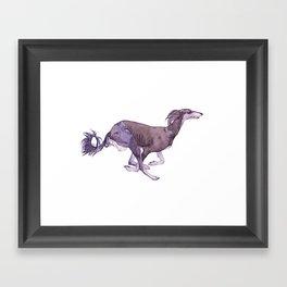 The Almost Gray Saluki Framed Art Print