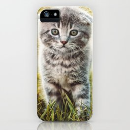 Small duckling playing with a little cat on green grass outdoors  iPhone Case