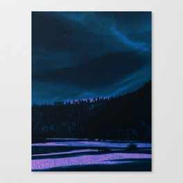 neon beach Canvas Print