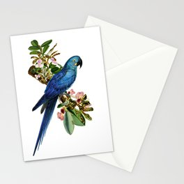 Blue Parrot Stationery Cards