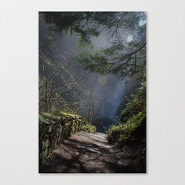 Trail to The Falls Canvas Print