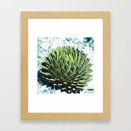 Nature Mandala_1.1 Framed Art Print