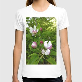 Apple Blossoms In Spring Time T-shirt