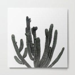 Black and White Cactus Metal Print