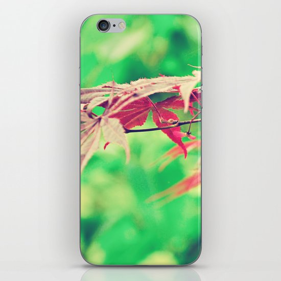 Pointers iPhone & iPod Skin