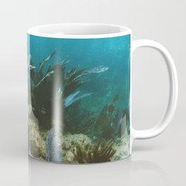 Mexican Caribbean Sealife Coffee Mug