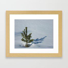 Frozen Tree Framed Art Print