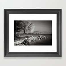Balaton Framed Art Print