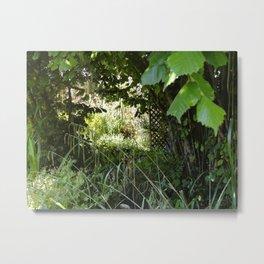 Path under trees Metal Print