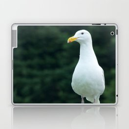 Seagull Photography Print Laptop & iPad Skin
