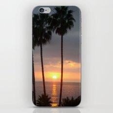 California Palms iPhone & iPod Skin