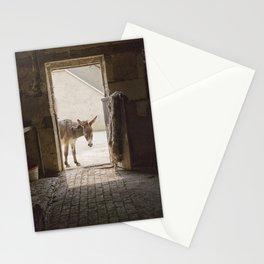 Cute Burro Looking Inside a Doorway Stationery Cards