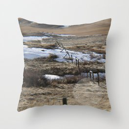 Lower River Road Throw Pillow