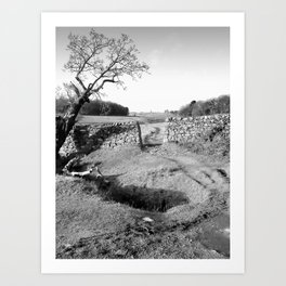 The Leaning Oak Art Print