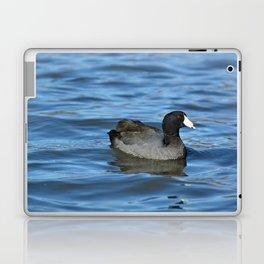 American Coot Laptop & iPad Skin