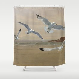Seagulls Flying Along the Beachfront Shower Curtain