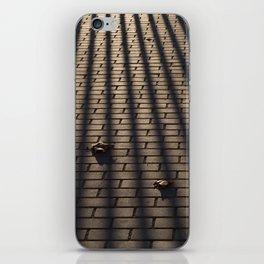 Behind bars iPhone Skin