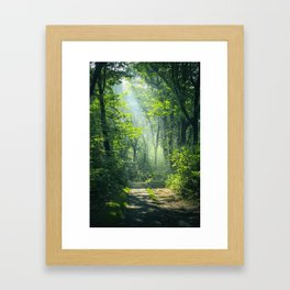 Woodland Glory Framed Art Print