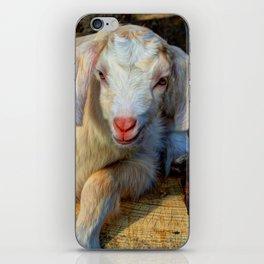 Newborn iPhone Skin