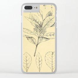 Bothalia 1921 Clear iPhone Case