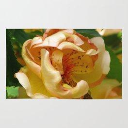 Yello Rose Rug