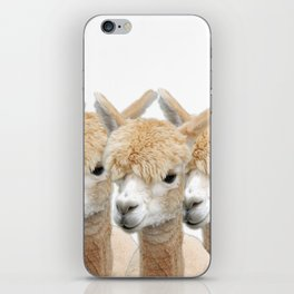 Alpaca Line Up iPhone Skin