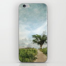 Windswept Tree on Barrier Island North Carolina iPhone Skin