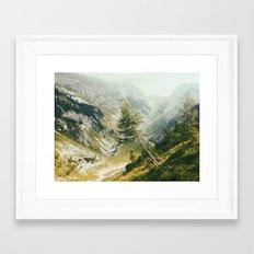Green pine Framed Art Print
