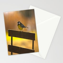 Great Tit On A Chair - Sunset Evening Stationery Cards
