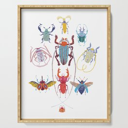 Stitches: Bugs Serving Tray