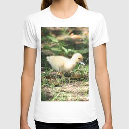 Baby Duckling strolling on a lawn T-shirt