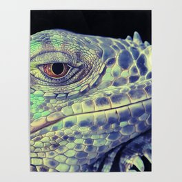 lizart dragon head Poster
