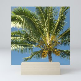 Hawaiian Coconut Palm Tree Mini Art Print