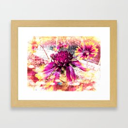 Elusive Framed Art Print