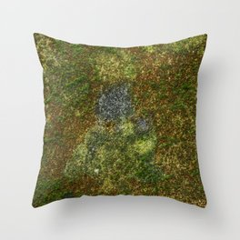 Old stone wall with moss Throw Pillow