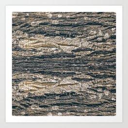 Surface Texture Print Art Print