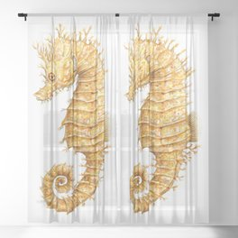 Sea horse, Horse of the seas, Seahorse beauty Sheer Curtain