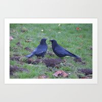 A talk of two Crows Art Print