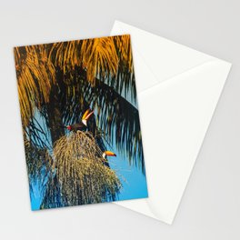 Tucans Stationery Cards