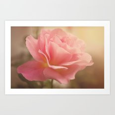 Love is much like a wild rose....... Art Print