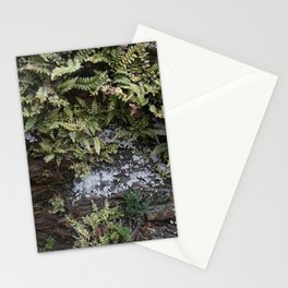 Fern Covered Coastal Cliff Face Stationery Cards