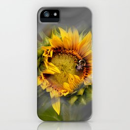 Which Way The Wind Blows iPhone Case