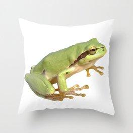 European Tree Frog Throw Pillow