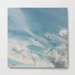 Ducking and Diving Metal Print