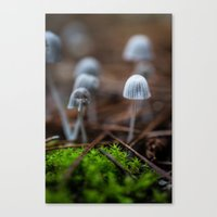 mushrooms Canvas Prints featuring Mushrooms by Michelle McConnell
