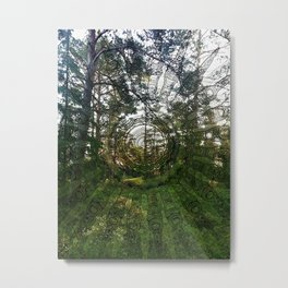 Spell of the forest fairies Metal Print
