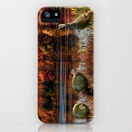 Hammond Pond iPhone Case